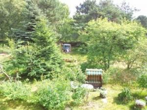 Amrum Ferienwohnung Garten